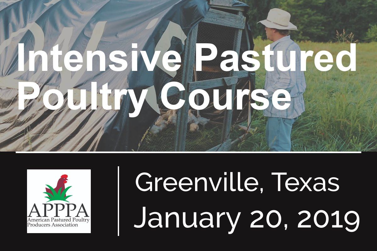 Intensive pastured poultry course in Greenville Texas